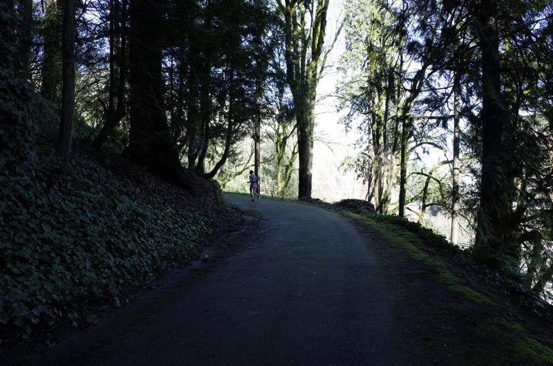 Washington Parkの小道